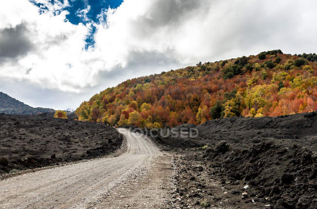 Scenic view of road through Conguillio National Park, Chile — Stock Photo