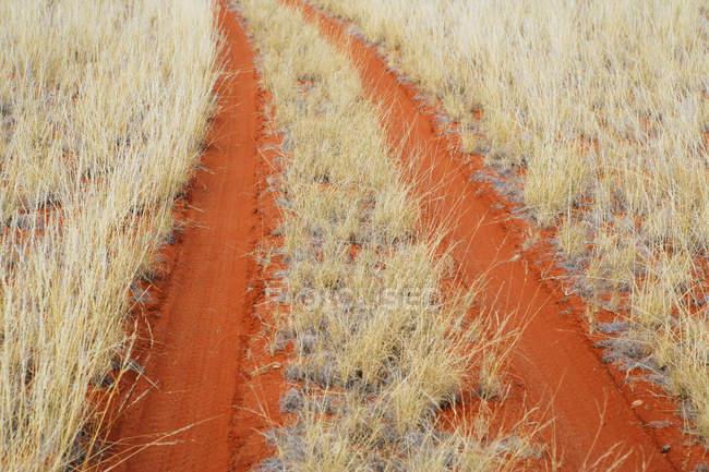 Pneus através de laranja areia no deserto — Fotografia de Stock