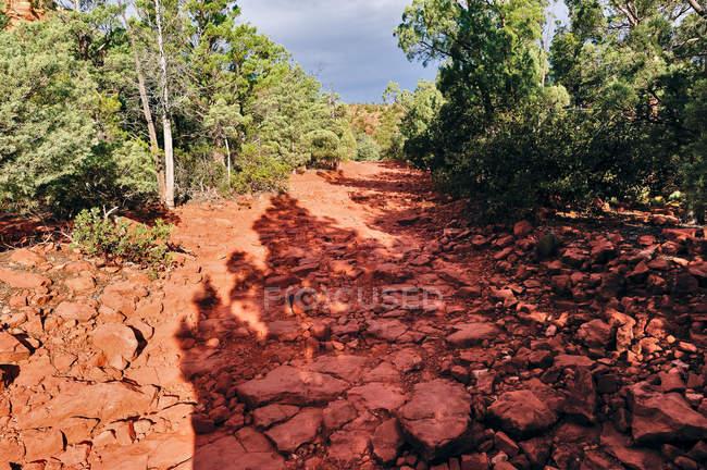 Vista panorâmica da trilha de Mesa Brins, EUA, Arizona, no Condado de Yavapai, Sedona — Fotografia de Stock