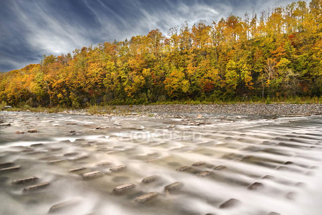 Scenic view of flowing river in autumn forest, Blei, Hokkaido, Japan — Stock Photo