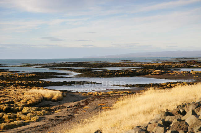 Vista panoramica del paesaggio costiero, Islanda — Foto stock