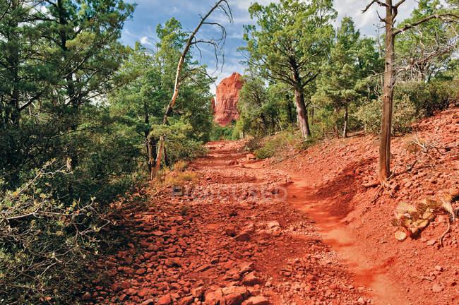 Vista panorâmica da trilha de Mesa Brins, Sedona, no Condado de Yavapai, Arizona, EUA — Fotografia de Stock