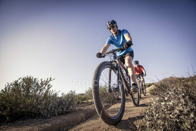 Two men mountain biking down track in nature — Stockfoto