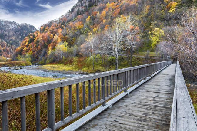 Vista panoramica del ponte in legno nel parco, Hokkaido, Giappone — Foto stock