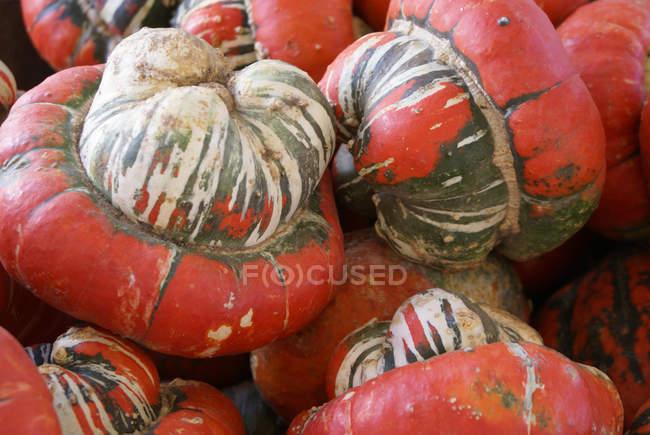 Nahaufnahme von frisch gepflückten roten Kürbisse im heap — Stockfoto