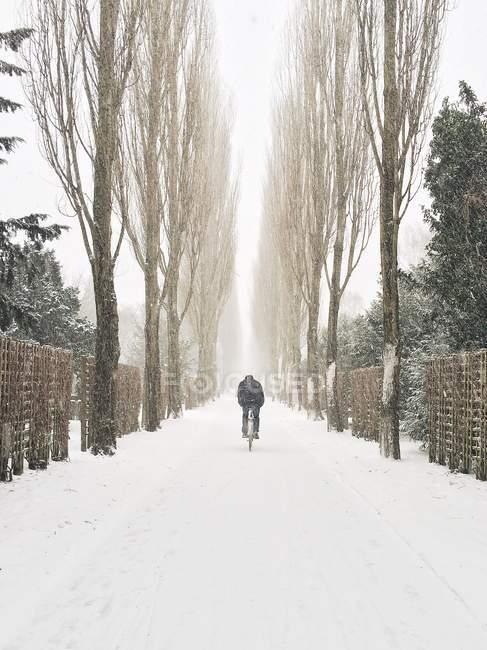 Man cycling along road in snow, Copenhagen, Denmark — Stock Photo