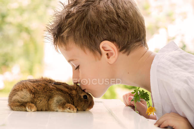 Close-up of Boy kissing pet rabbit — Stock Photo