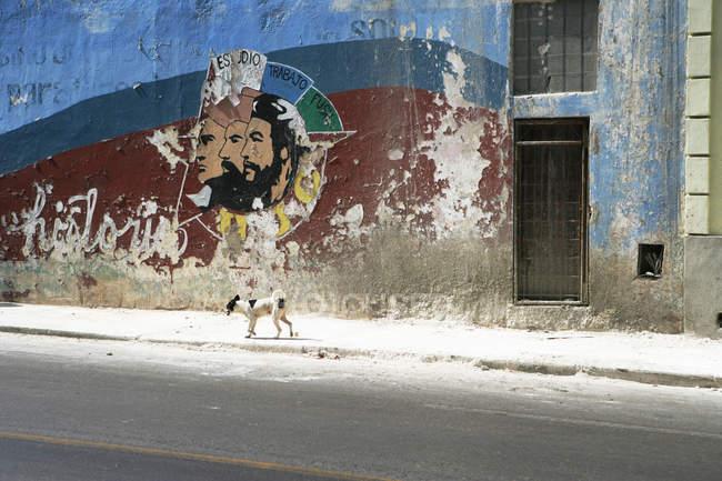 Dog walking past mural of cuban revolutionaries, Havana, Cuba — Foto stock