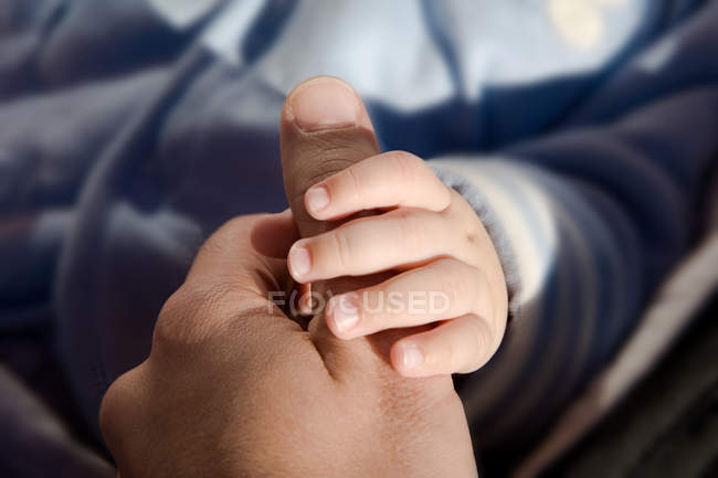 Close up image of toddler holding parent hand — Stock Photo