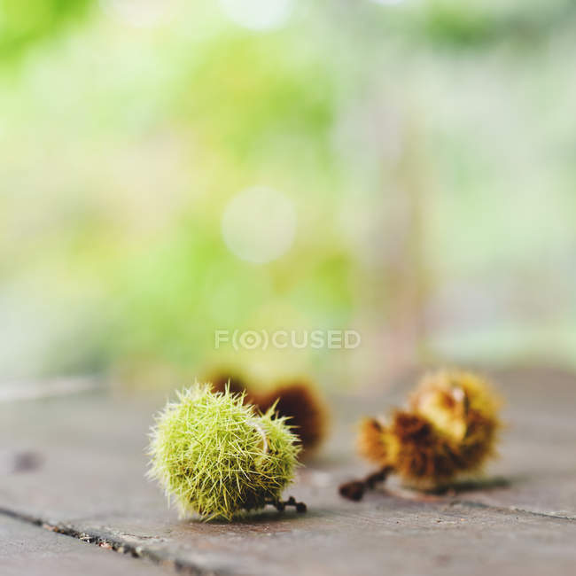 Close-up view of chestnuts on a wooden table against blurred background — Stockfoto