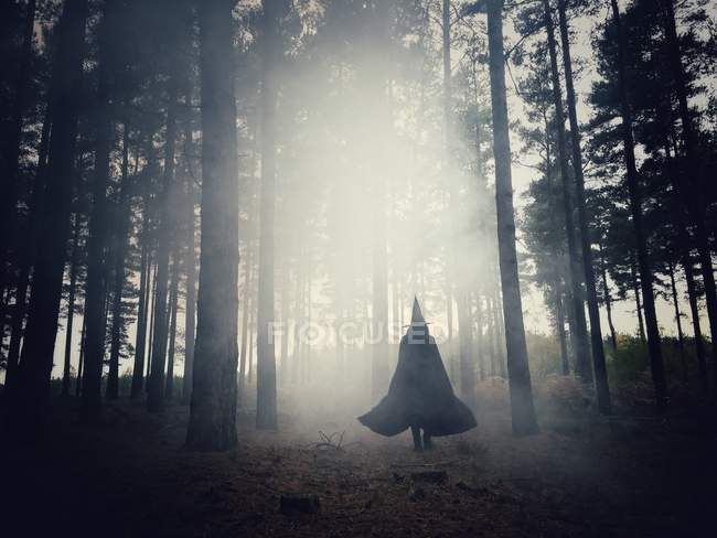 Woman dressed as a witch walking through the forest — Stockfoto