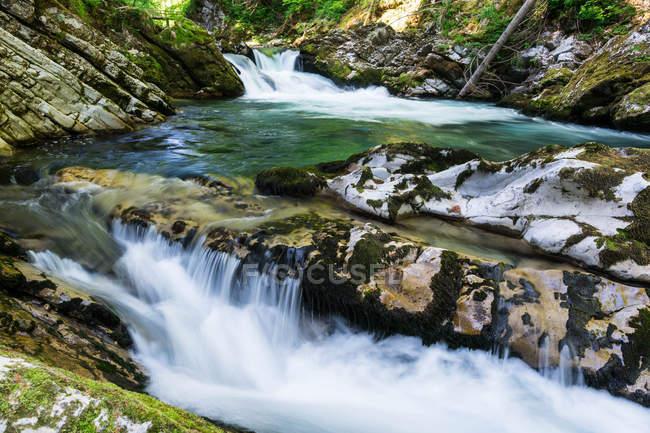 Scenic view of Vintgar Gorge, Podhom, Radovljica, Slovenia — Stock Photo