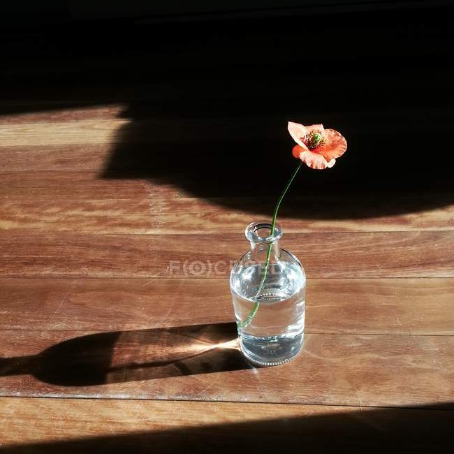 Poppy flower in a bottle of water on wooden table — Stock Photo
