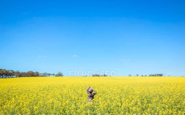 Mädchen steht im Rapsfeld mit blauem Himmel auf dem Hintergrund — Stockfoto