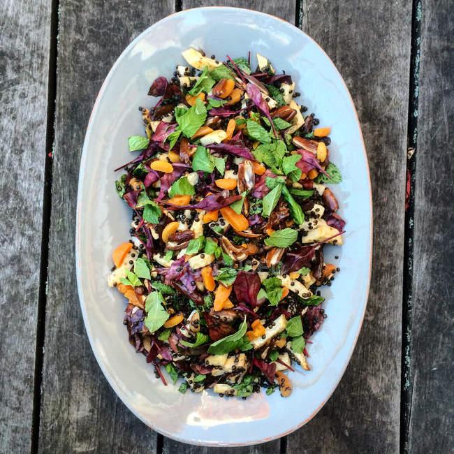 Aipo cozido no forno, lentilhas, damasco e salada de hortelã em travessa em madeira — Fotografia de Stock