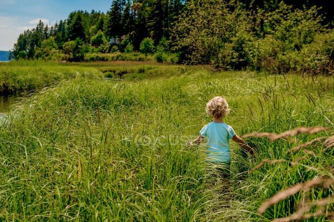 Вид сзади Девушка, идущая по высокой траве в природе — стоковое фото
