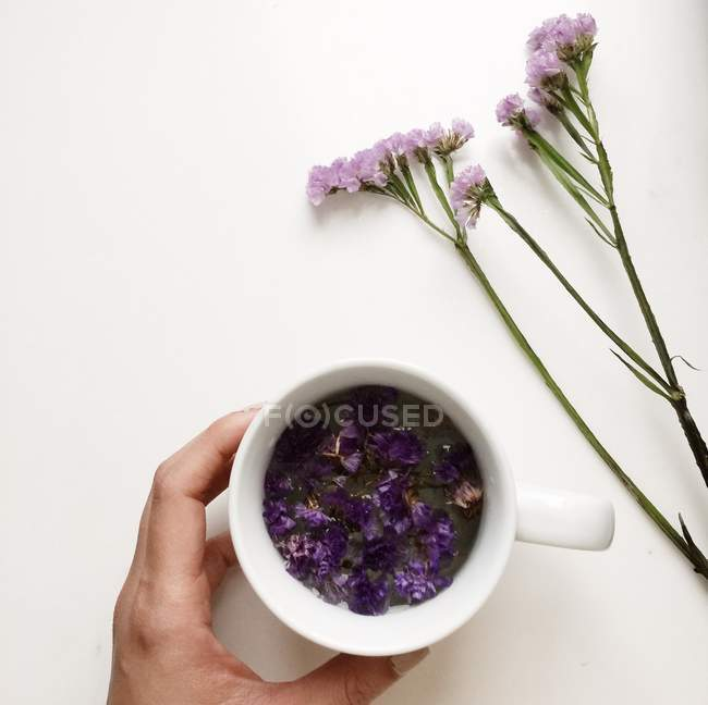 Cropped image of Hand holding a cup of floral forget-me-not flower tea — Stock Photo
