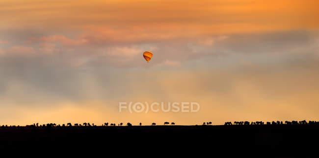 Hot Air Balloon Over African Plain at beautiful sunset sky, Africa — Stock Photo
