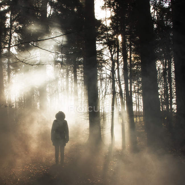 Mystic picture of hooded figure in woods — Stock Photo