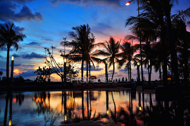 Scenic view of silhouette of palm trees at sunset, Jakarta, Indonesia — Stock Photo