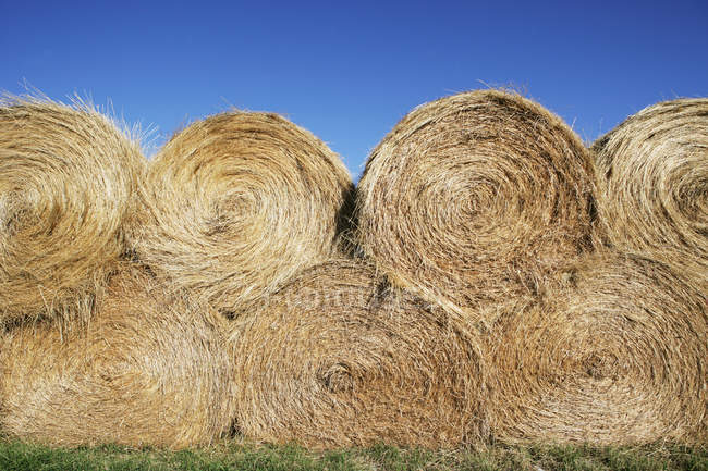 Scenic view of stack of round hay bales — Stock Photo