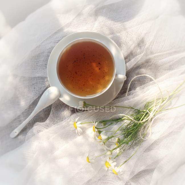 Tea cup and daisies on muslin, elevated view — Stockfoto