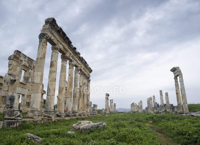 Руїни стародавніх римських колонадою, Хама, Сирійська Арабська Республіка — стокове фото