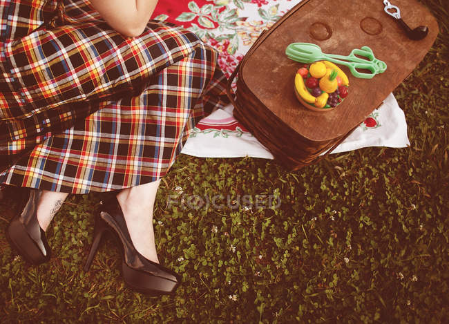 Cropped image of Woman lying on blanket at picnic, retro style — Stock Photo