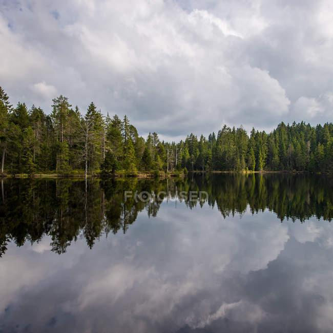Vue majestueuse de forêt reflétant dans le lac sous le ciel nuageux — Photo de stock