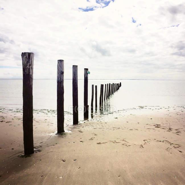 Malerische Aussicht auf hölzernen Buhne am Strand, Maasvlakte Strang, Holland — Stockfoto