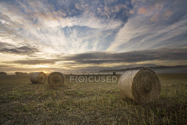 Sunrise in a field on Cranborne Chase, UK, England, Dorset — Stock Photo