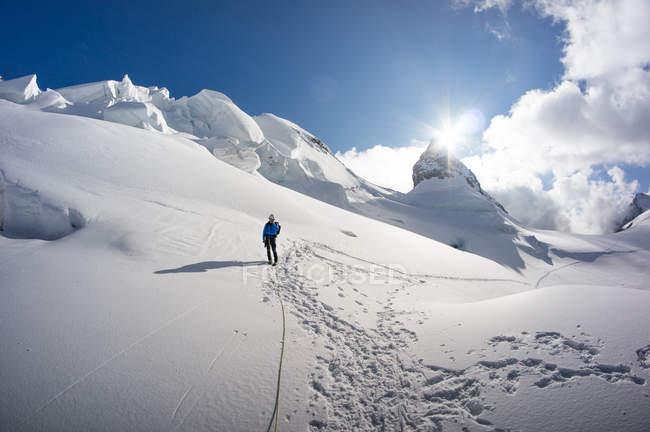 Человек, идущий по леднику в швейцарских Альпах, Piz Bernina, Graubunden, Швейцария — стоковое фото