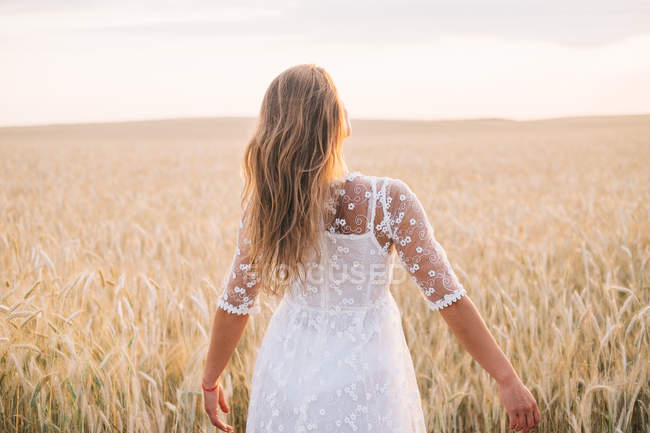 Vue arrière de la femme marchant à travers le champ de blé — Photo de stock