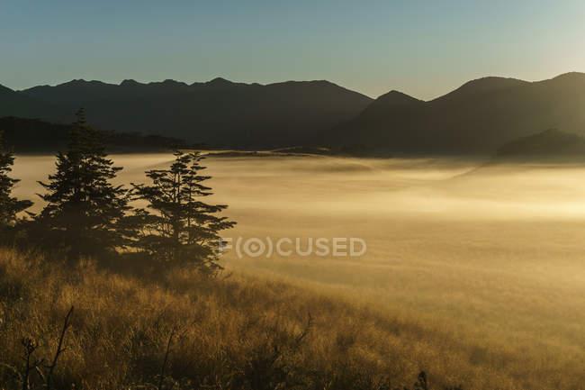 Vallée sinueuse sur le Plateau Matiri, parc national kahurangi, Tasman, Nouvelle-Zélande — Photo de stock