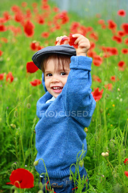 Little boy standing in field of blooming poppies — Stock Photo