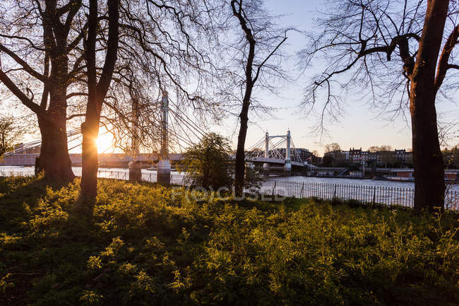 Мальовничим видом Альберт міст видно з відстань до району Баттерсі парк, Лондон, Великобританія — стокове фото