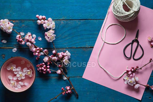 Розовый сакуры, ножницы, бумага и строки — стоковое фото
