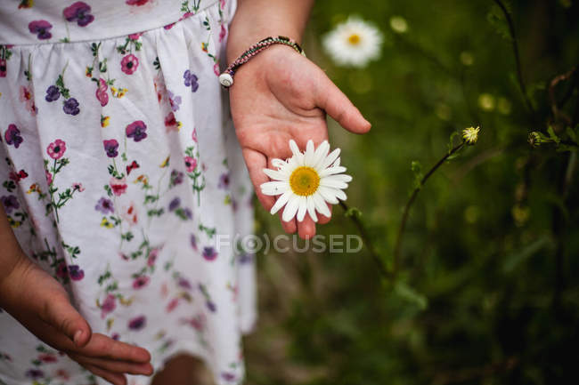 Close-up view of Girl in dress holding beautiful daisy flower — Stock Photo