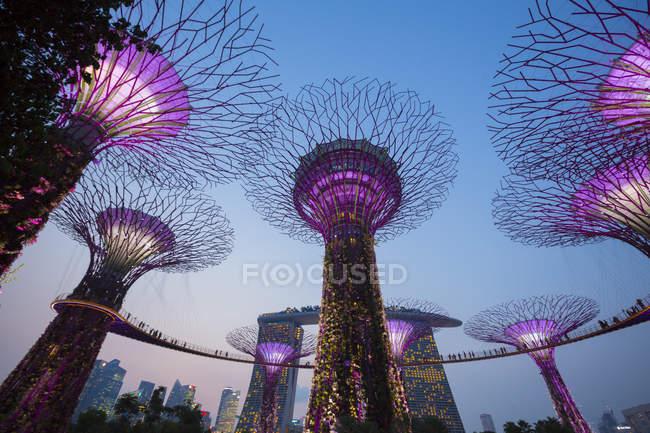Сади біля затоки вночі, Сінгапур. — стокове фото