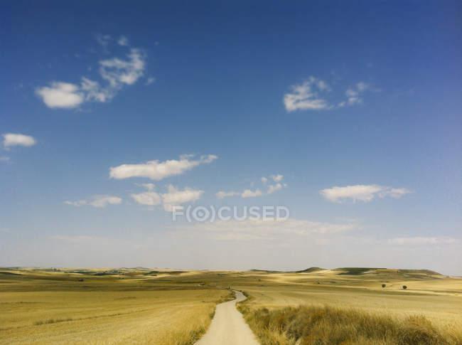 Vista panorámica del camino en el campo bajo cielo azul - foto de stock