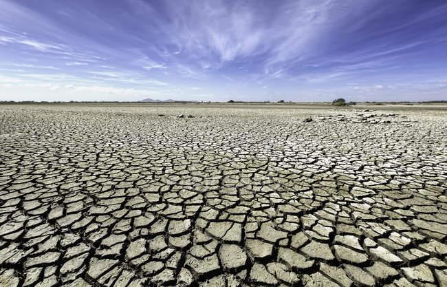 Plaine aride avec sol desséché, Victoria, Australie — Photo de stock