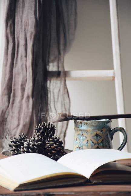 Open Book and mug of tea in cozy room — Stock Photo
