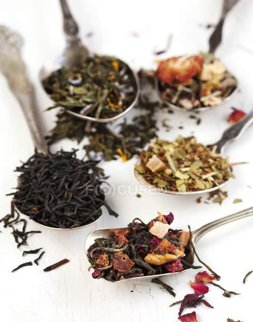 Différents types de thé, noir, vert, floral et à base de plantes sur blanc — Photo de stock