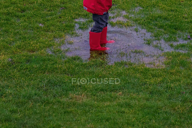 Низкая часть детей в сапогах Веллингтона, стоящих в луже на газоне — стоковое фото