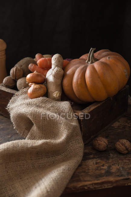 Food stylish composition of pumpkin and ginger in wooden box against dark background — Stock Photo