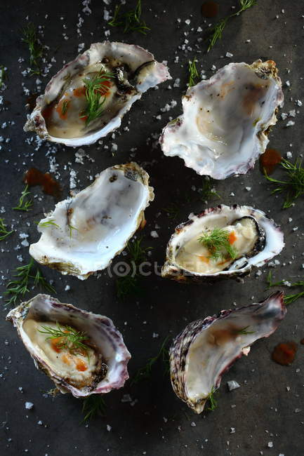 Fresh Oysters with dill and salt on grey surface — Stockfoto