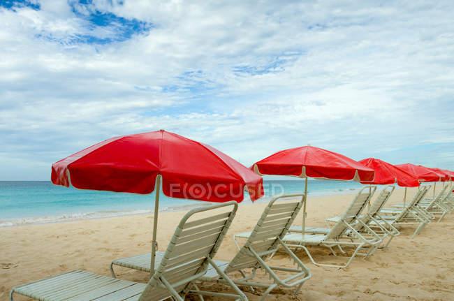 Пляж шезлонги і парасольки поспіль на пляжі — стокове фото