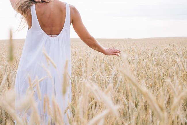 Rückansicht einer sinnlichen Frau, die in einem Weizenfeld geht — Stockfoto