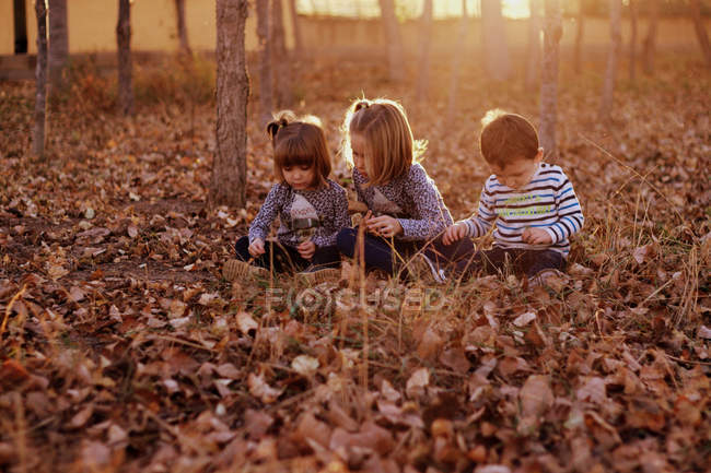 Three children sitting on fallen leaves at forest — Stock Photo