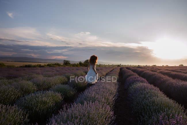 Femme portant une robe romantique courant à travers le champ de lavande — Photo de stock